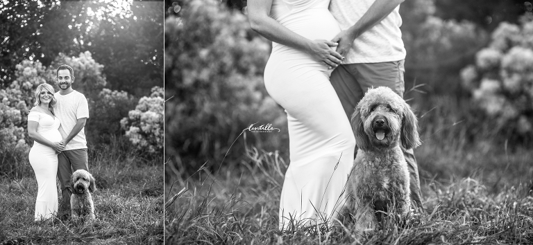 A dog sits at his owners' side | Lentille Photography | Houston Maternity Photographer